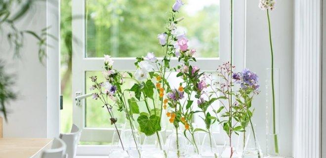 10 x creatief met zomerbloemen