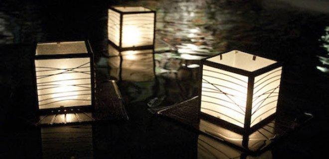 Duurzame drijvers: licht in de vijver