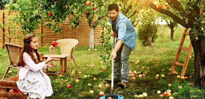Fruit rapen zonder plukken