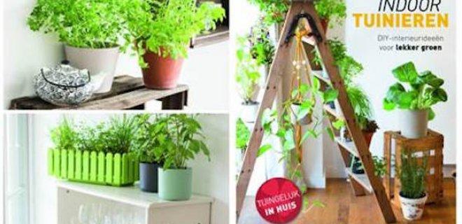 Indoor tuinieren: je huis een groene oase
