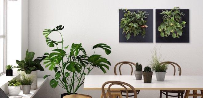 Natuur aan de muur