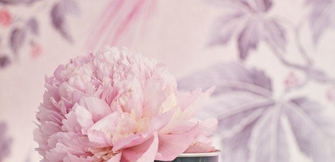 Pink collectie voor borstkankermaand
