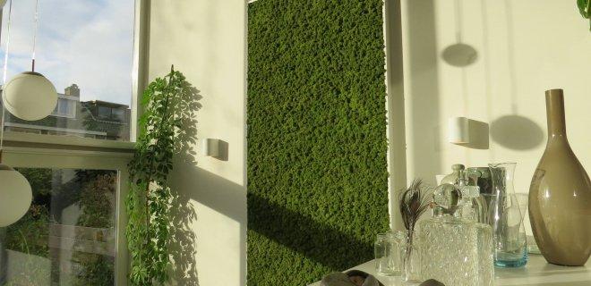 Groen aan de muur met Moswens