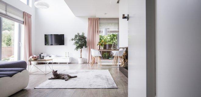 Hoe belangrijk is luchtvochtigheid in je woning?