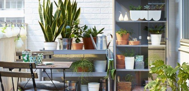 Ikea plantenkas voor balkon of tuin