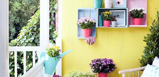 Deze herfst willen we kleur in de tuin!