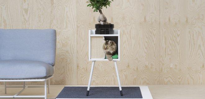 Meubels speciaal voor honden en katten