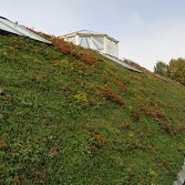 Groendak Warmte-isolatie | Ekogras