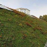 Technogroen hellend dak | Ekogras