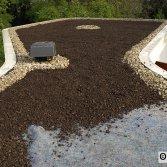 Technogroen systeem plat dak | Ekogras