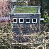 Duurzame dakbedekking | Groendak