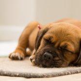 Dunne vloer isolatie | Isobooster