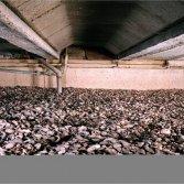 Milieuvriendelijke schelpen isolatie