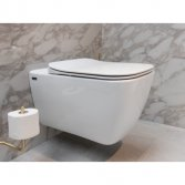 Modern rimfree toilet