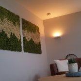 Mosschilderijen van Moswens