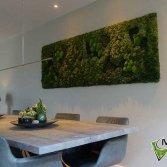 Mosschilderij in de woonkamer