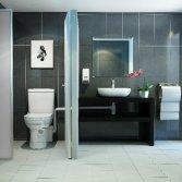 Compacte vermaler voor toilet en wastafel   Sanibroyeur
