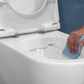 Toilet Fusion Pure Rim met vrije spoelrand