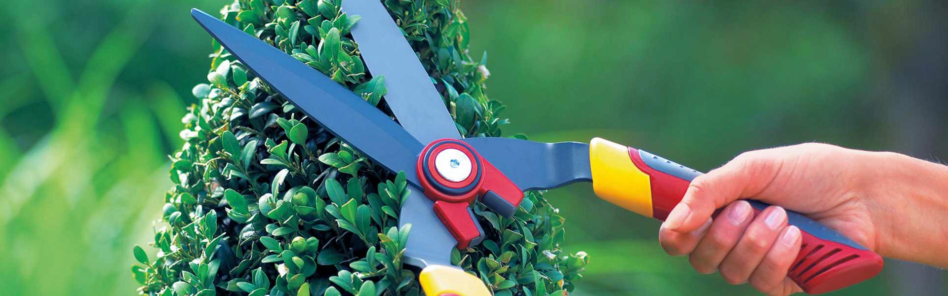 Handmatige heggenscharen ǀ WOLF-Garten