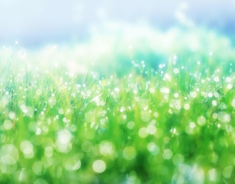 Geïsoleerde Filterbox luchtfilter | HomEvap