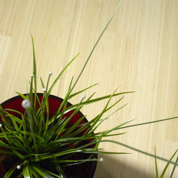 Voordelige bamboe vloer | MOSO Bamboe