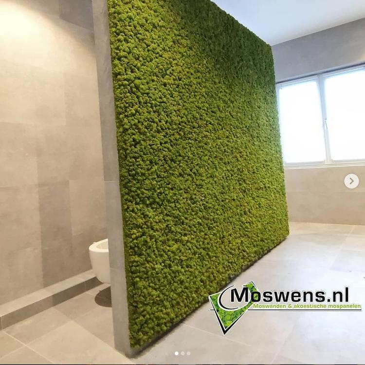 Groene moswand in de badkamer | Moswens