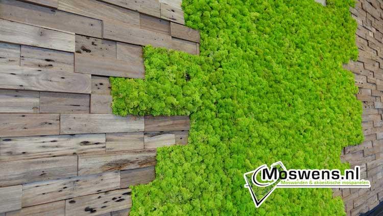Wand van mos en teakhout