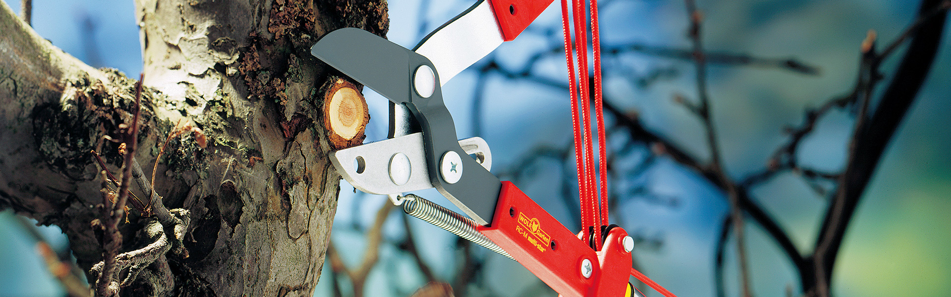 multi-star® boomverzorging zonder ladder | WOLF-Garten