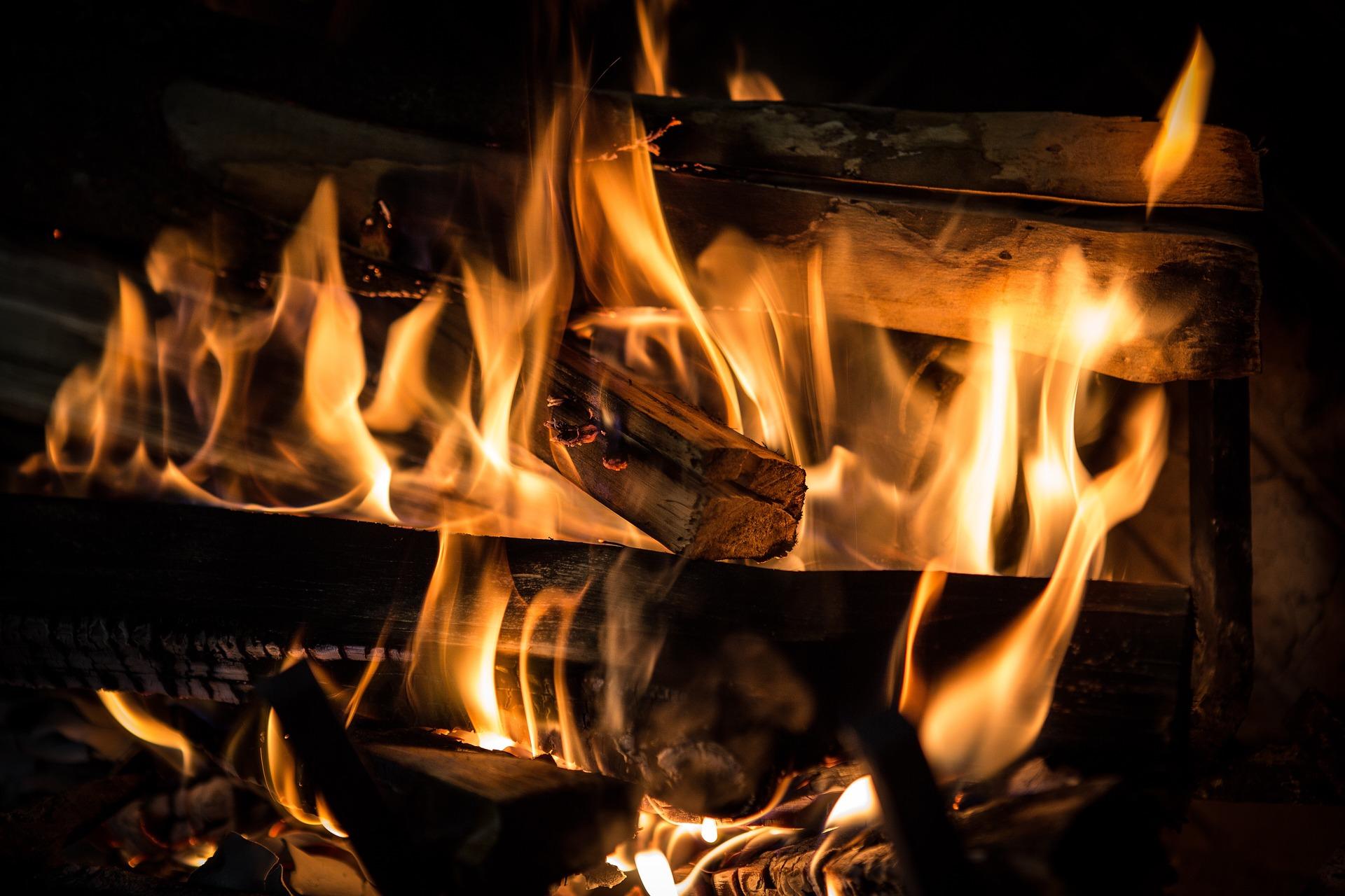 Haardhout ovengedroogd #haard