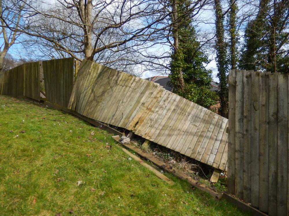 Schade aan de tuin? Opstalverzekering