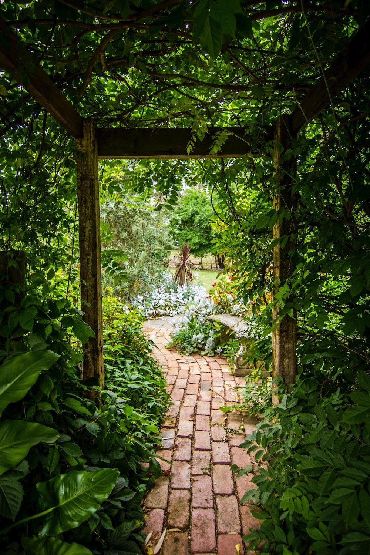 Deze klusjes in je tuin moeten regelmatig herhaald worden #tuin #tuinklusjes
