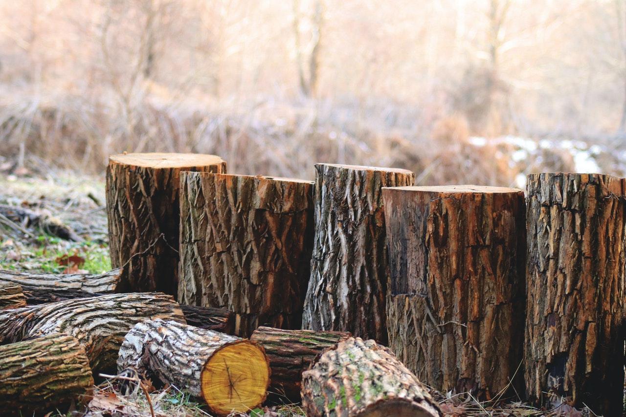 Een duurzame tuin? Gebruik meer hout. We geven je voorbeelden #tuin #hout #tuininrichten