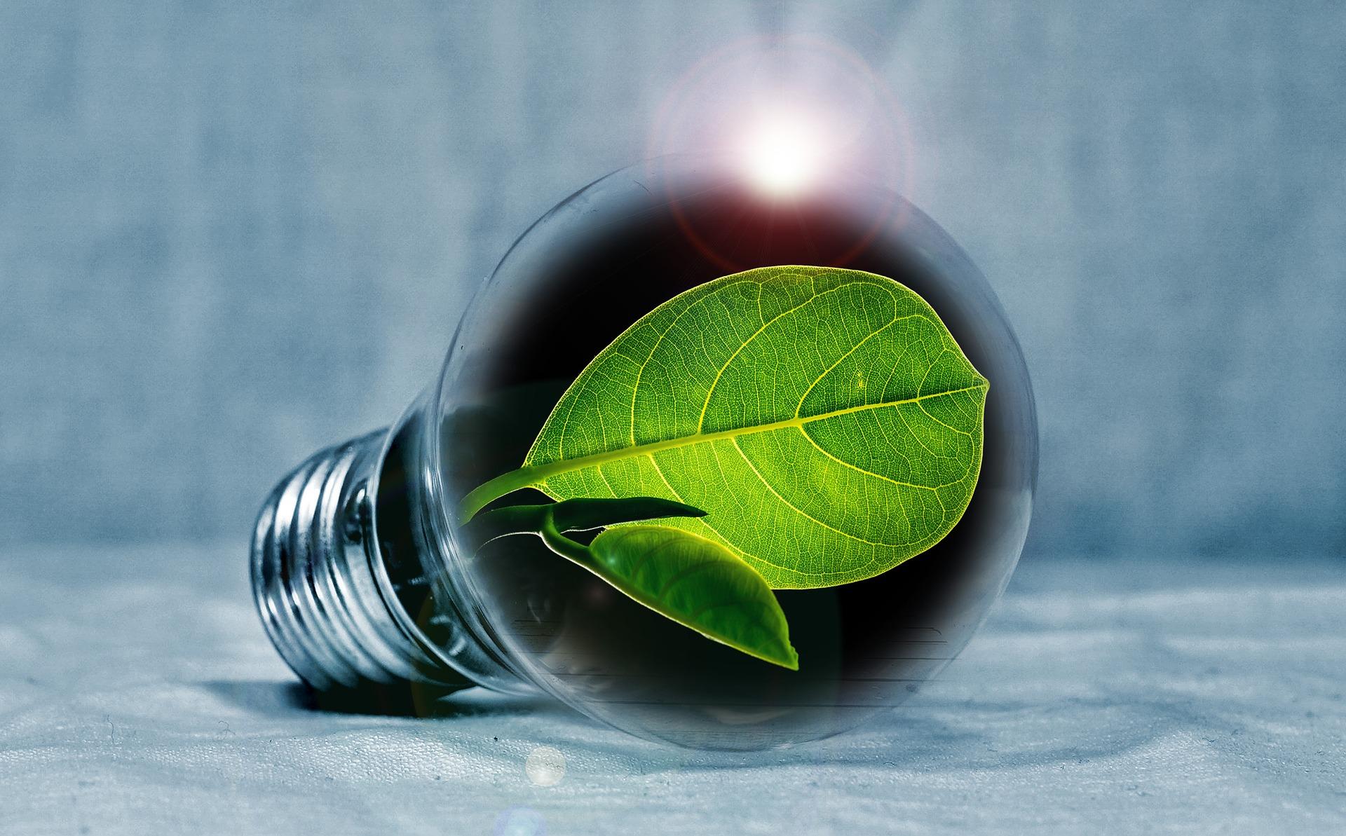 Goedkoopste energie contract. De energiekosten beperkt houden door 5 handige tips #energiekosten