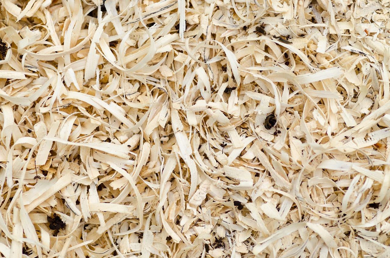 houtvezel zaagsel #hout