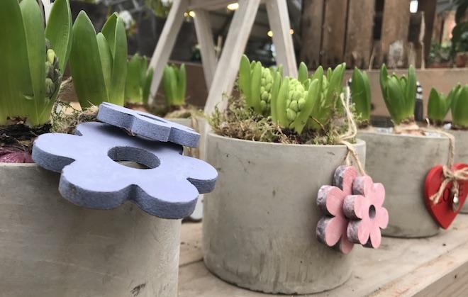 UW-woonmagazine blog Een frisse start van een nieuw jaar Hyacint by Styling ID