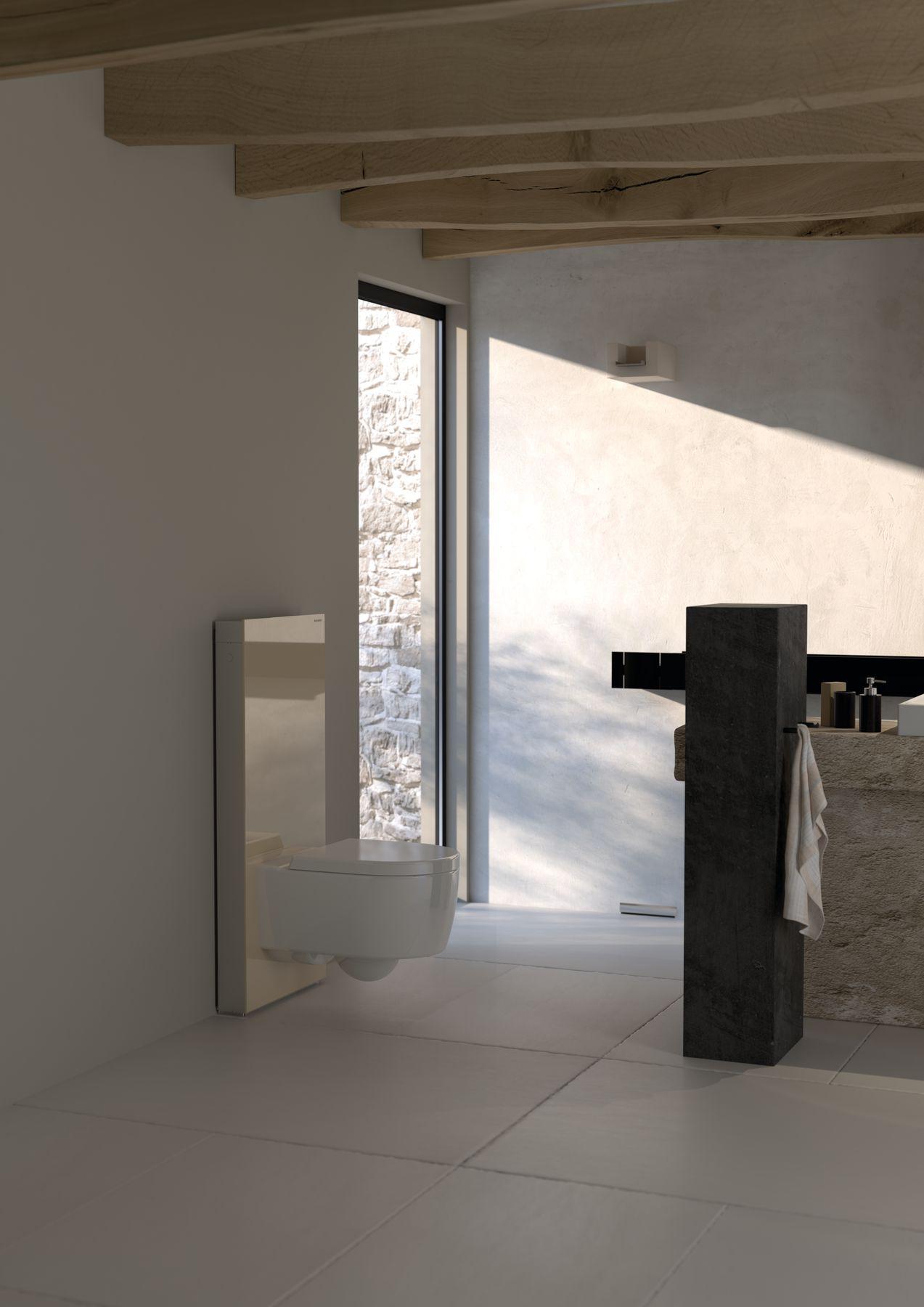 Badkamer met Geberit toilet met Monolith design-module