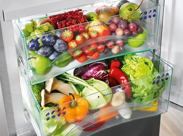 Liebherr biofresh lades koelkast