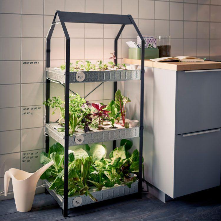 Keukentrend 2017: Tuinieren in de keuken. Groenten en kruiden zelf kweken met de  indoor moestuin van Ikea uit de Växer serie en de KRYDDA serie.