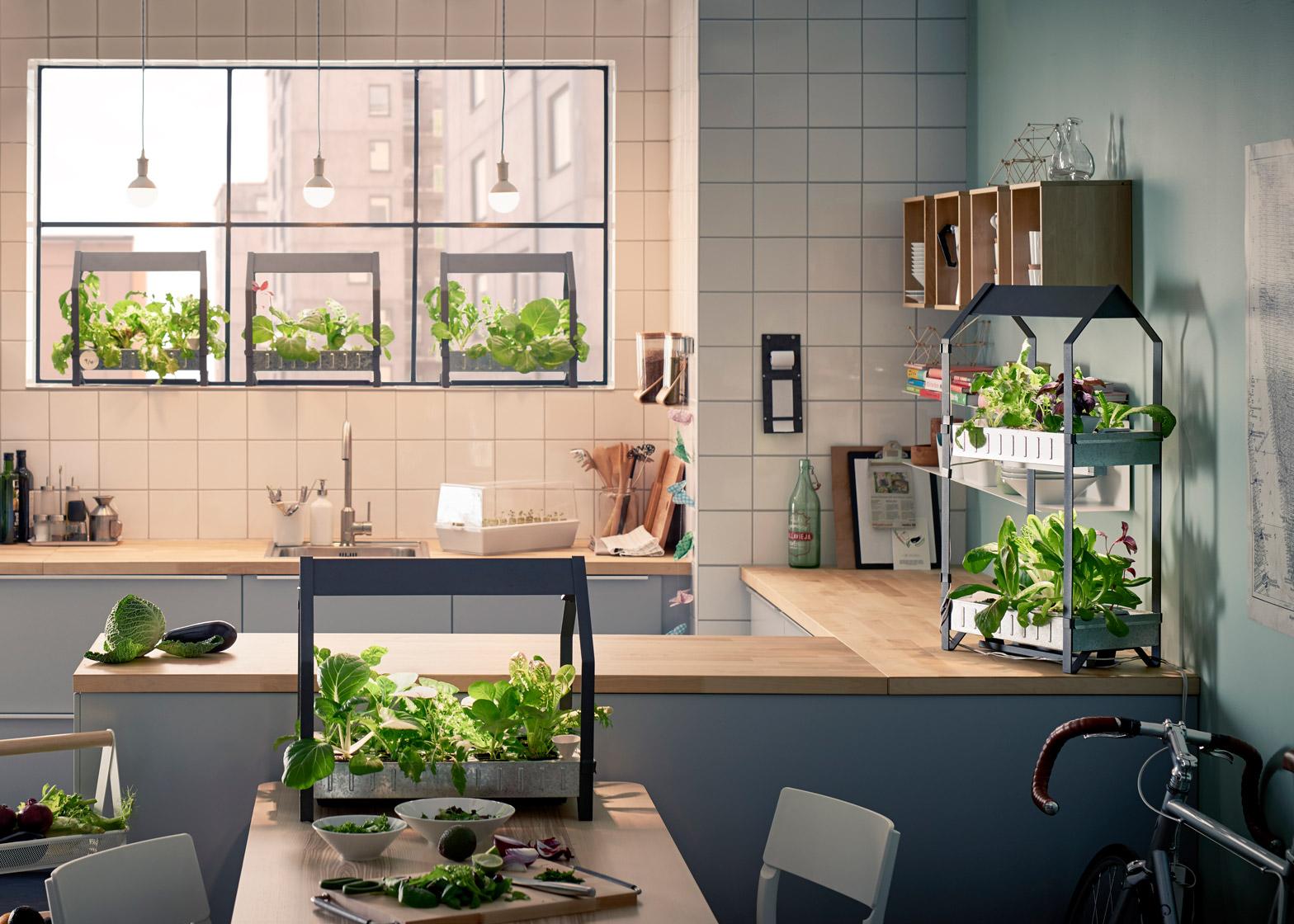 Keukentrends 2017 - zelfgekweekte groenten en kruiden in de tuin met de hydrocultuur kweeksets uit de VÄXER serie en de KRYDDA serie. Indoor Gardening #trend #keuken #groen #moestuin #ikea