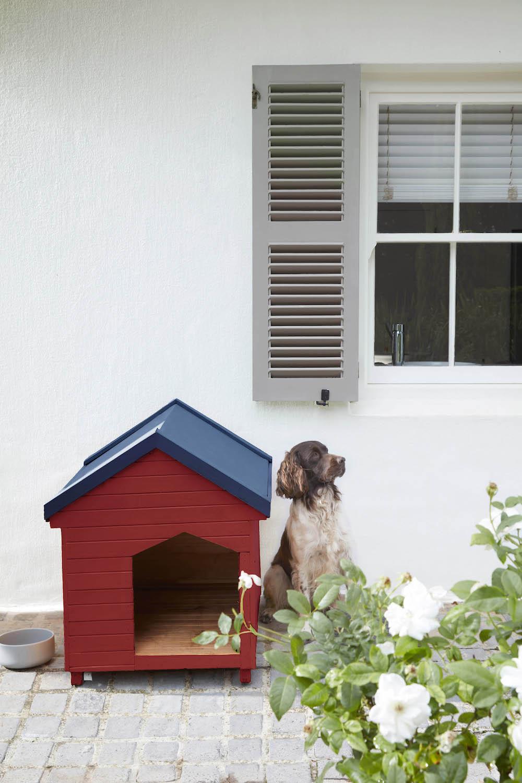 Hondenhok tuin #tuin #buitenverf #littlegreen