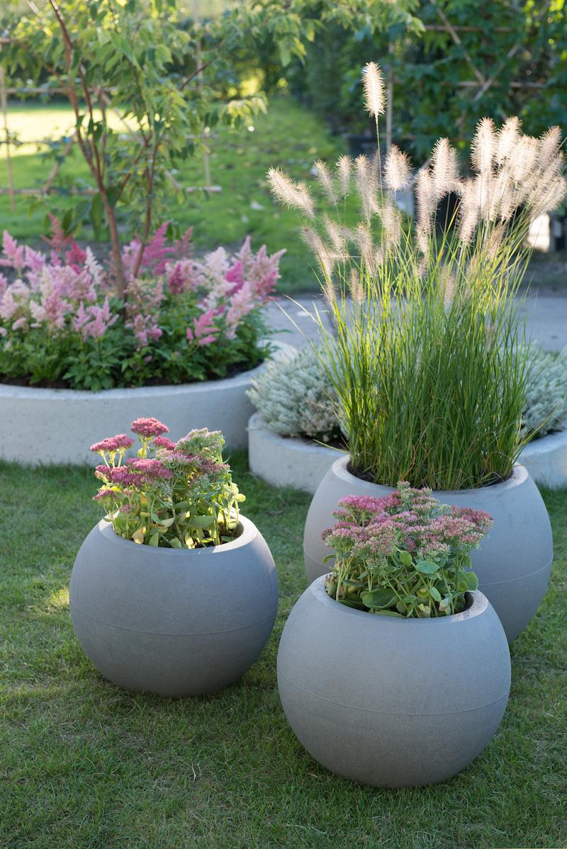 Tuintrends 2019 - groene planten met bloemen in pasteltinten en siergrassen #tuintrends #tuinidee #trendtuin #tuin #tuininspiratie #tuinplanten #planten #bloemen #pastelkleuren #2019