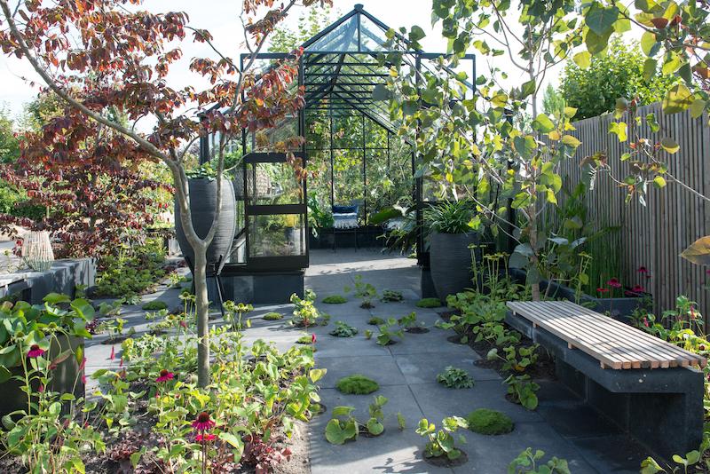 Tuintrends 2019 - hergebruik van materialen en slimme oplossingen zoals een regenton en plantenbak in één en tuintegels met uitsparingen. Trendtuin 2019 Harvesting Elements #tuin #tuinidee #tuintrends #trendtuin #tuininspiratie #groen