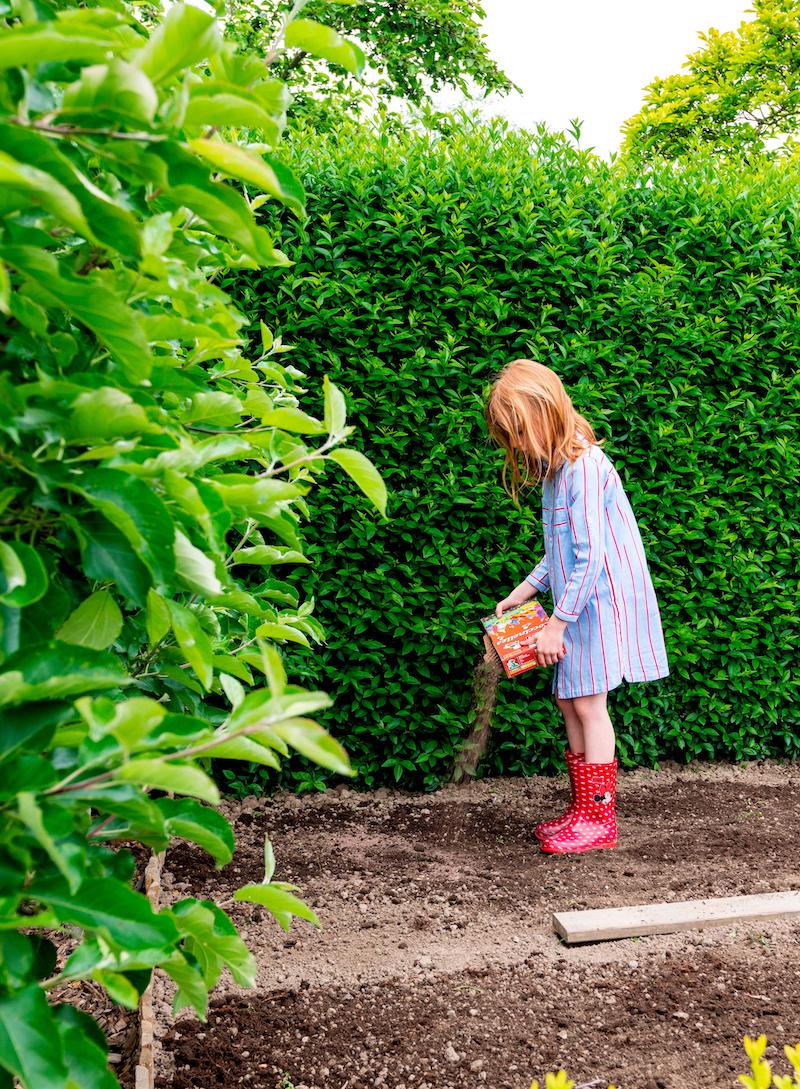 Bloemenmengsels zaaien voor bloemen, bijen, vlinders en andere bestuivers. En een gezonde bodem #tuin #bloemen #vlindertuin #zaaien #tuininspiratie