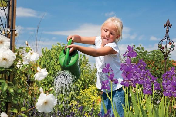 Aanleg van een watervriendelijke tuin met producten van Aco Easygarden