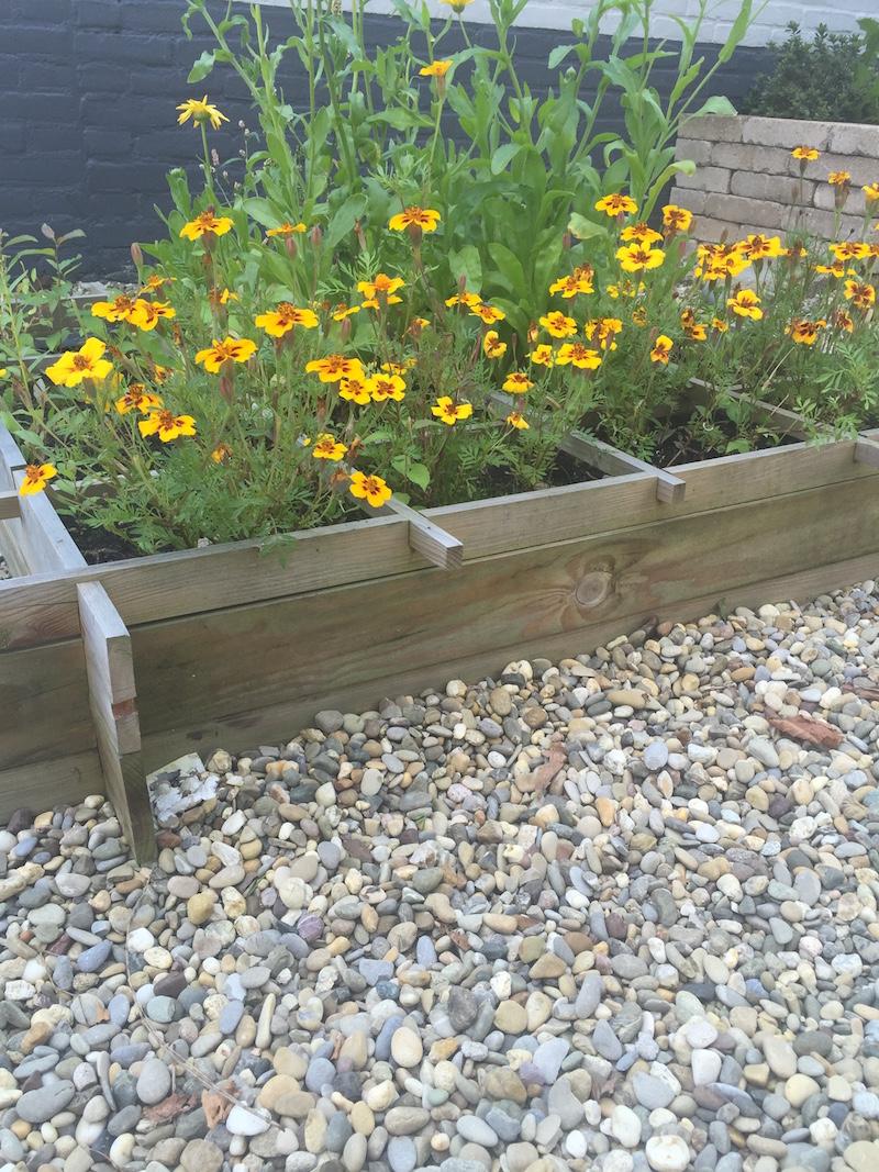 Tuininspiratie! Houten bloembakken op Morane grind van Amagard.com #grind #tuin #terras #amagard