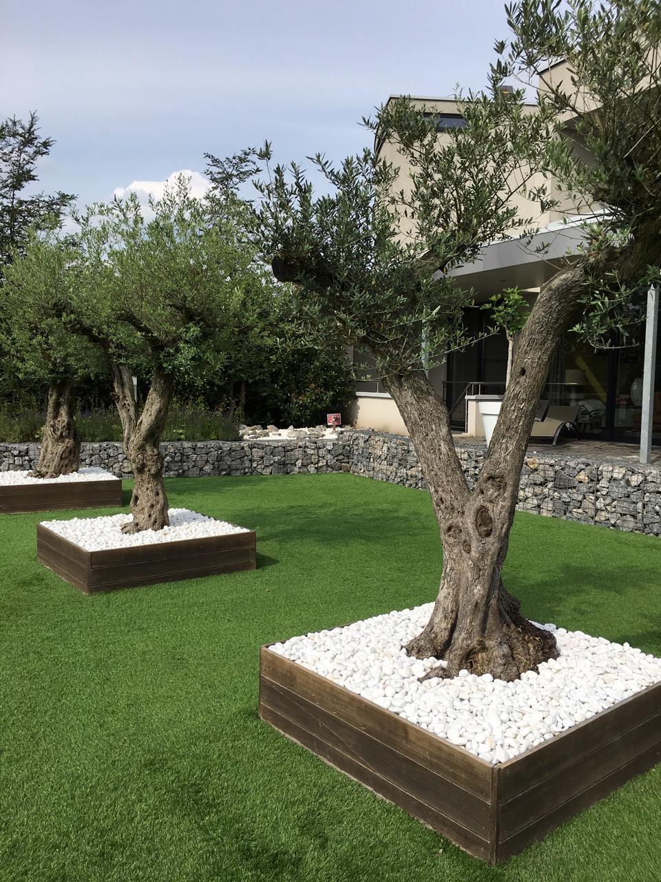 Tuininspiratie: olijfbomen in houten bakken met sneeuwwitte marmergrind via Amagard.com #marmergrind #grind #tuininspiratie #amagard