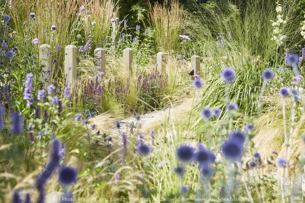 Tuininspiratie. Tuinontwerp groene tuin in strandsfeer van Jacqueline Volker #tuininspiratie #tuin #groenetuin #tuinontwerp #jacquelinevolker
