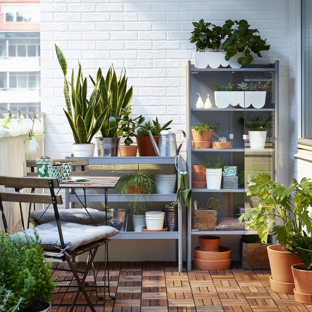 ... voor balkon of tuin - Nieuws Startpagina voor tuin ideeën  UW-tuin