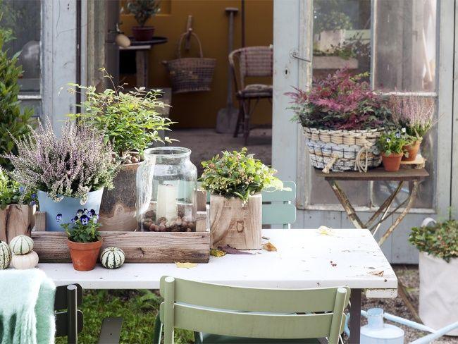 Creativiteit in de tuin in de herfst.