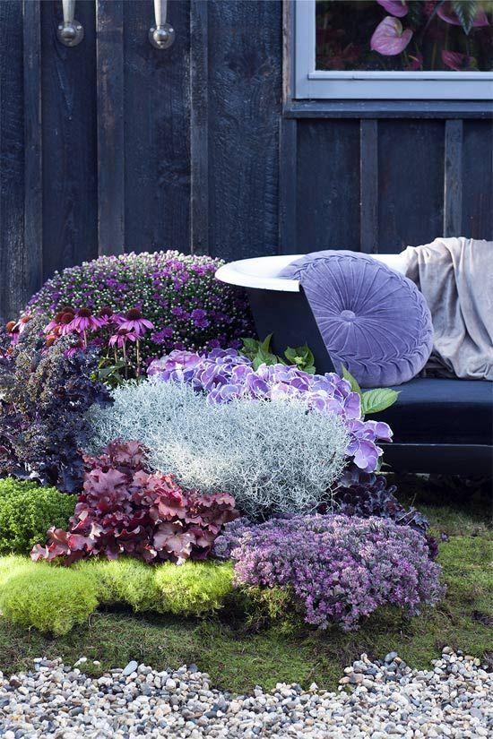 Tuintrend herfst 2018. Romance 3.0 grote bloemen en planten in de meest intense kleuren en vormen. #mooiwatplantendoen.nl